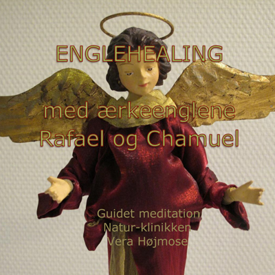 CD-Rafael-Chamuel-400